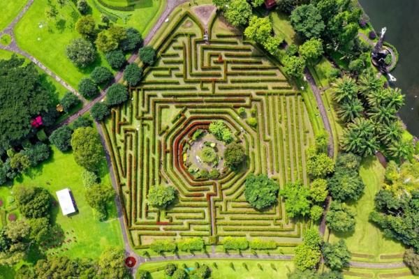 projektmenedzser-labirintus