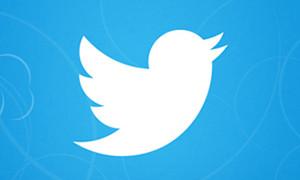 13.07.08-Twitter-Bird